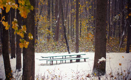 First snow in autumn park covered a bench Stock Images