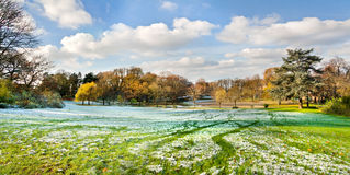 The first snow in the autumn park. Panorama. Stock Photos