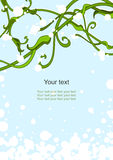 First snow background. Background with a flower ornament, greeting card Stock Photos
