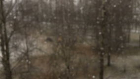 First snow stock footage