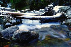The first snow on Bumping Creek Royalty Free Stock Photos