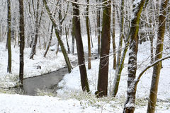 The first snow in the Central park, Kaliningrad Stock Photos