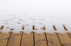 First snow covered wooden floor on balcony Stock Photography