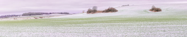 First snow on crop fields in daylight Royalty Free Stock Image