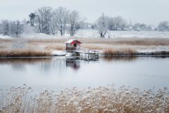 The first snow fell royalty free stock photography