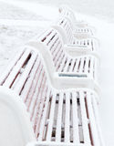 First snow. Five benches in the park covered with fresh snow Stock Photography