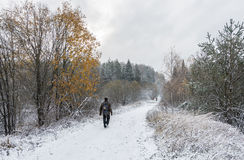 The first snow. Forest road covered with the first snow and tourists walking along the road stock photo