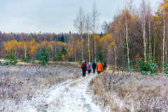 The first snow. A group of tourists walking on snow-covered road to the forest decorated with yellow birch leaves royalty free stock images