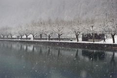First snow in Interlaken Royalty Free Stock Photography
