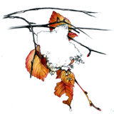 First snow. Leaves with snow, hand drawn illustration Stock Photography