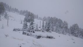 First snow on the mountains made a lot of damage. First snow mountains made lot damage stock photo