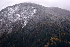 The first snow in the mountains is still autumn Stock Photo