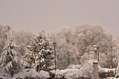 The first snow at my home stock images