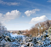 First snow in the park. Royalty Free Stock Photo