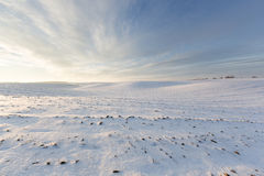 First snow. On the plowed field Stock Photo