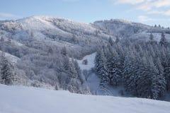 First Snow. In the Pocatello Range, Idaho Royalty Free Stock Photography