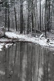 First snow with a pond. First snow on a pond in rural Ontario Stock Photo