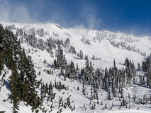 First Snow Rainier Stock Photo