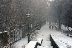 The first snow of the season Stock Image