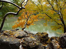 The first snow in summer palace. Winter is coming Royalty Free Stock Images