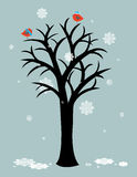 First snow. Winter cartoon decoration with birds sitting on a tree a snow falling Royalty Free Stock Image