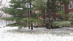 First Snow of the Year stock video footage