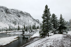 First Snow Yellowstone River, Yellowstone N P Royalty Free Stock Photos