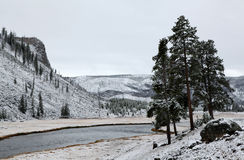First Snow Yellowstone River, Yellowstone N P Stock Images