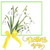 The first snowdrops Galanthus with Happy Mother s Day gift card. The first snowdrops Galanthus with Happy Mother`s Day gift card. Photo-realistic mesh vector Royalty Free Illustration