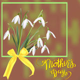 The first snowdrops Galanthus with Happy Mother s Day gift card. Royalty Free Stock Image