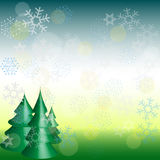First snowfall background on three holiday pine trees. Space for text Royalty Free Stock Images