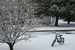 First Snowfall with Bike Royalty Free Stock Photo
