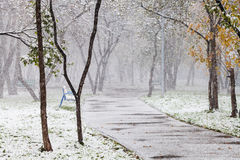 First snowfall in city park in autum Stock Image