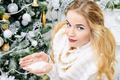 First snowfall Royalty Free Stock Photography