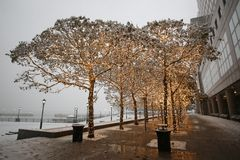 First Snowfall of the Season in Manhattan royalty free stock photography