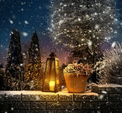 First snowfall in winter garden Royalty Free Stock Photo