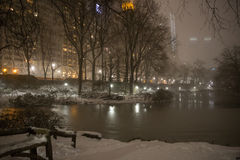 The First Snowstorm Of 2017 in Central Park Stock Images
