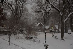 The First Snowstorm Of 2017 in Central Park Royalty Free Stock Image