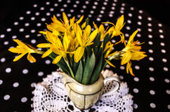 First spring bouquet of yellow crocus in small jug Royalty Free Stock Photos