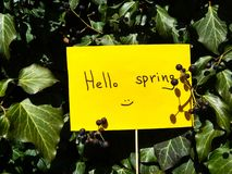 First spring day inscription on paper hello spring on nature background royalty free stock images