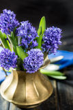 First spring flower - blue hyacinth in brass vase Stock Photos
