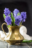 First spring flower - blue hyacinth in brass vase Royalty Free Stock Photo