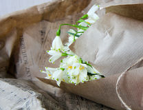 The first spring flowers in paper. First fresh spring flowers are white bells bouquet wrapped in paper Stock Photos