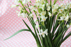 The first spring flowers in paper. First fresh spring flowers are white bells bouquet wrapped in paper Stock Image