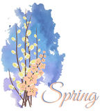 The first spring flowers. Watercolor painting. Poster. Empty space for your text Royalty Free Stock Photo