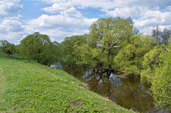 The first spring greens on the small river Stock Photos