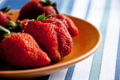 The first spring strawberries Stock Images