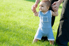 First steps. First unsteady steps on the lawn Royalty Free Stock Images