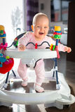 First steps in the baby walker Stock Image