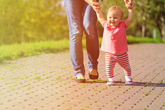 First steps of little girl in summer park Stock Photography